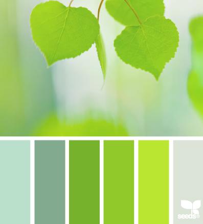 Leafed Brights