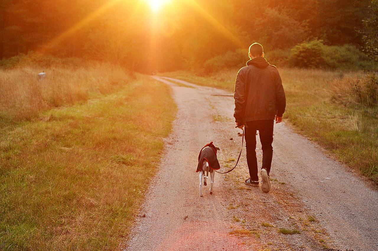 man_walking_dog